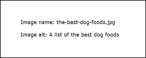 A list of the best dog foods